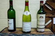 Beachaven Vineyards-18