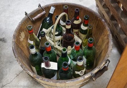 Beachaven Vineyards-19