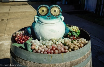 A little toad whimsy.