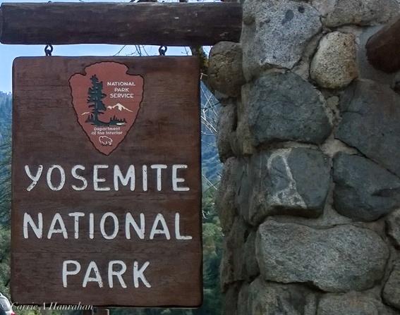 yosemite2-10