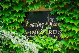 Roaring River_-11