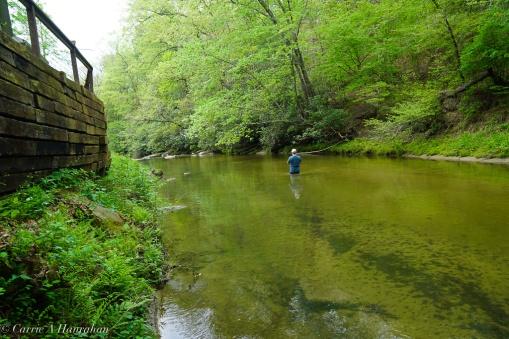 Roaring River_-15
