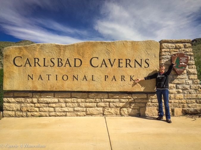 Guadalupe Mts and Carlsbad Caverns-28