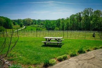 McRitchie Winery_-5