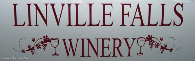 Linville Falls Winery-13