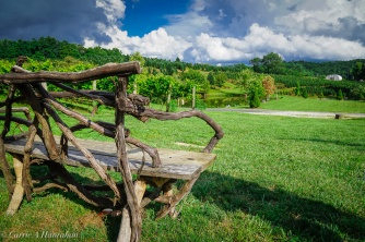 Linville Falls Winery-23