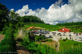Linville Falls Winery-29
