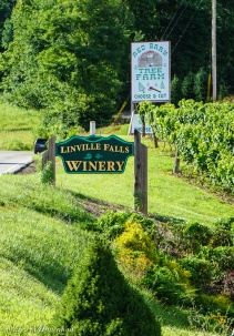 Linville Falls Winery-30