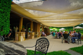 Linville Falls Winery-5
